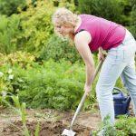 Werken in de tuin is gezond